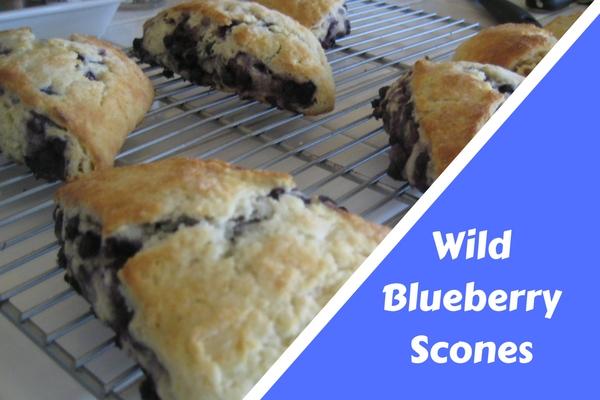 Wild Blueberry Scones