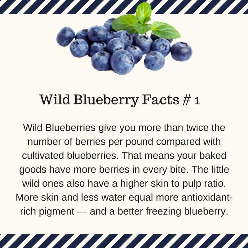 wild blueberry granola bars