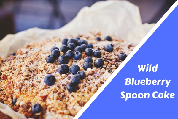 Wild Blueberry Spoon Cake