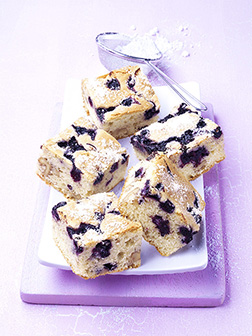 John's No Bake Wild Blueberry Squares