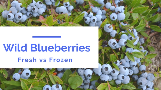 Wild Blueberries: Fresh vs Frozen