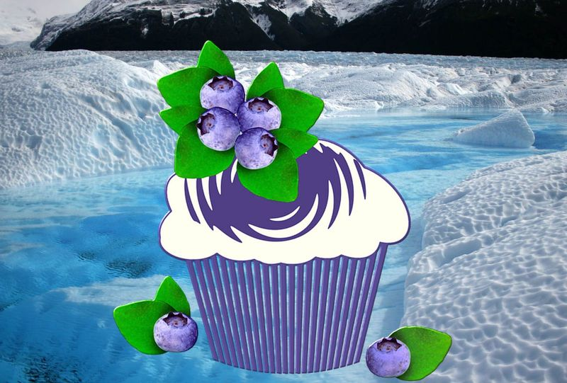 Icy Blueberry Muffins