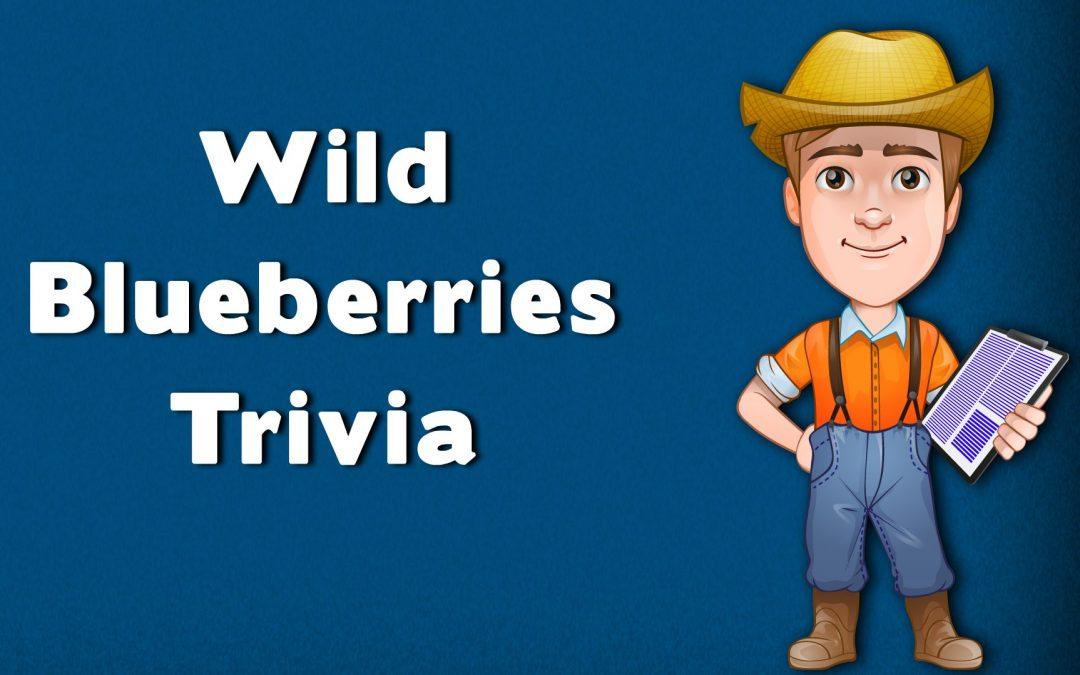 Wild Blueberry Trivia Fun Facts