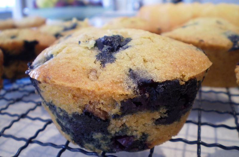 Wild Blueberry Nut Muffins