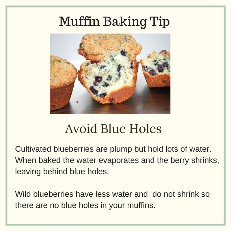 wild blueberry pumpkin muffins