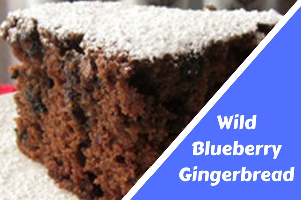 Wild Blueberry Gingerbread