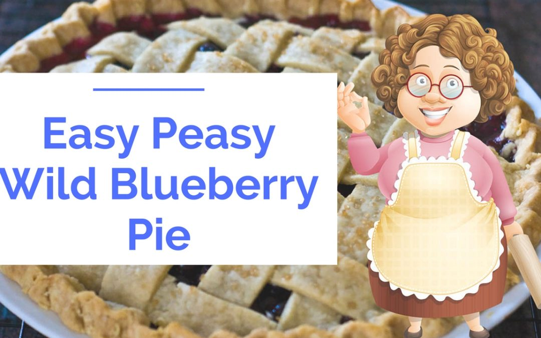 Easy Peasy Blueberry Pie
