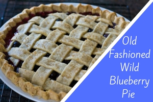 Old Fashion Wild Blueberry Pie