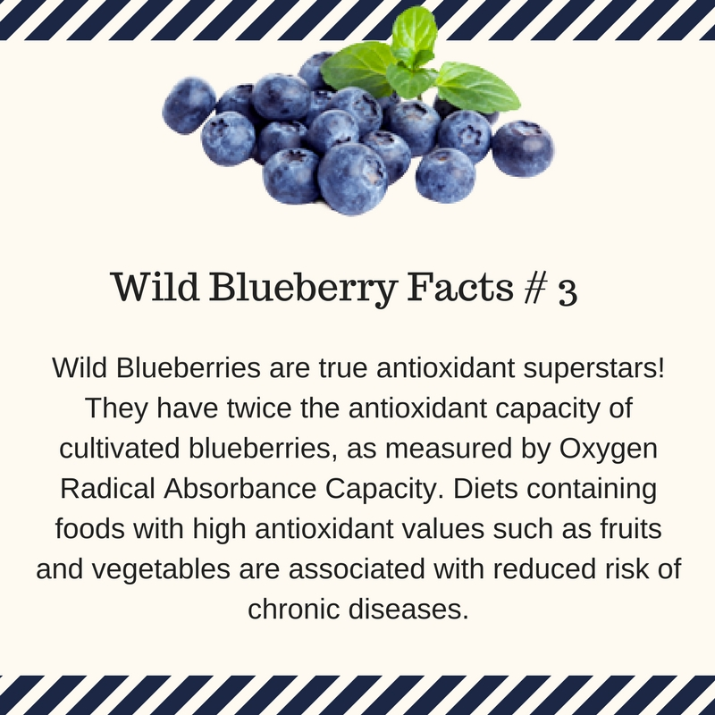 Wild Blueberries are antioxidant superstars.