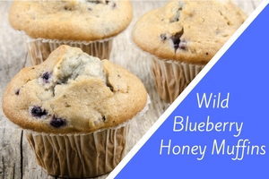 Wild Blueberry Honey Muffins
