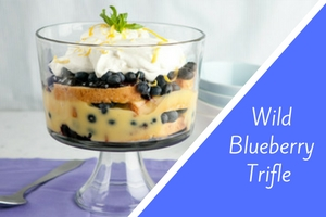 Wild Blueberry Trifle