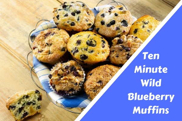 Ten Minute Wild Blueberry Muffins