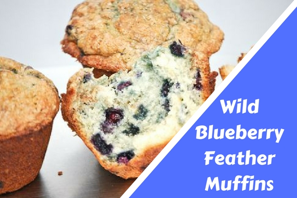 Wild Blueberry Feather Muffins.