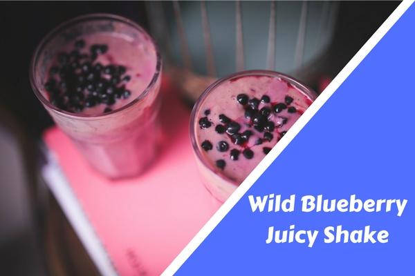 Wild Blueberry Juicy Shake