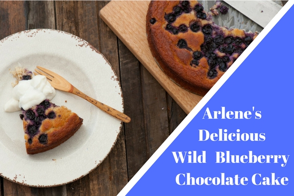 Arlene's Delicious Wild Blueberry Chocolate Cake