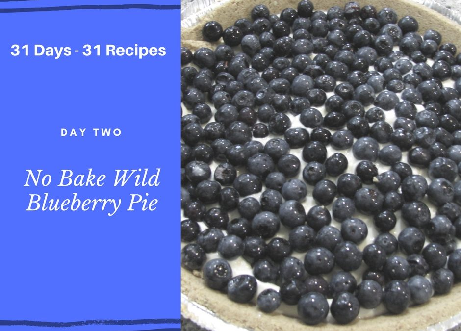 No Bake Wild Blueberry Cheese Pie