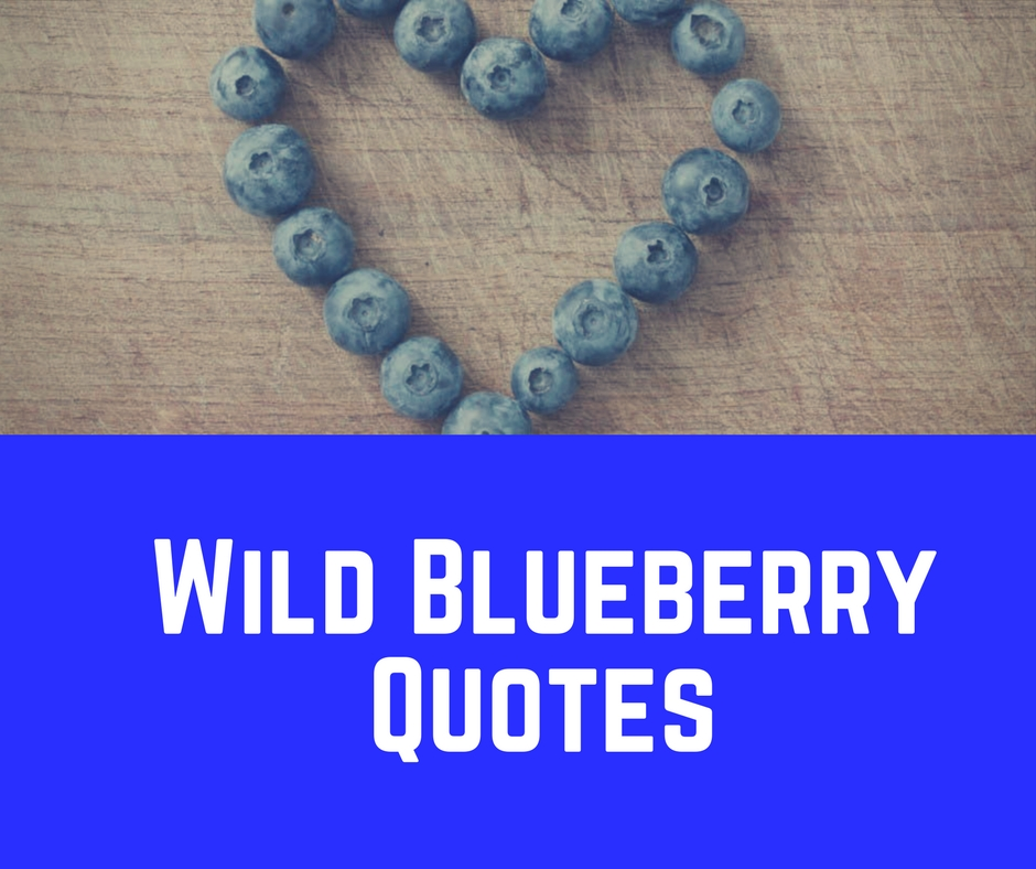 Wild Blueberry Quotes