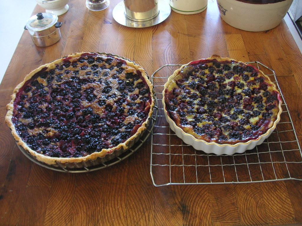 Fresh Blueberries For Sale