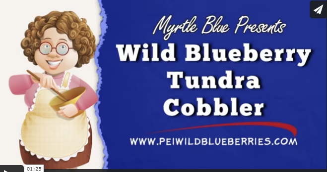 Wild Blueberry Tundra Cobbler